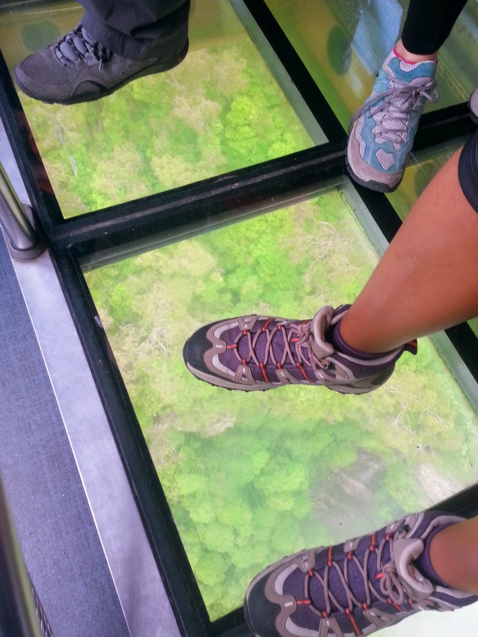 Anyway, part of the appeal lies with the glass floor which is highly  dependant on clear weather. If it mists up, you probably won't get to see  the treetops.