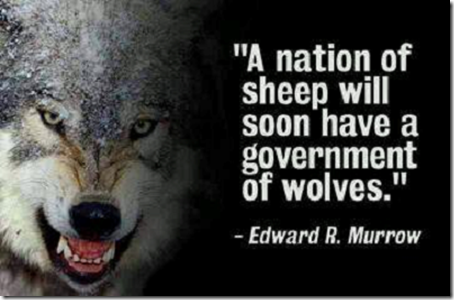 Sheep edward r murrow