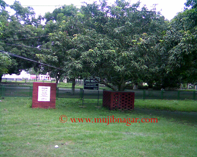 Mujibnagar-Complex-Project-Open-by-Prime-Minister-Shaike Hasina-and-also-implant-a-maogo-tree-in-17-April-1998_2.png