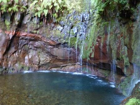 14. Cascada in Madeira.JPG