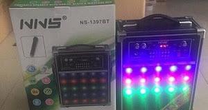 Loa NIVIVS NS1397 (KÈM 1 micro không dây) - có bluetooth