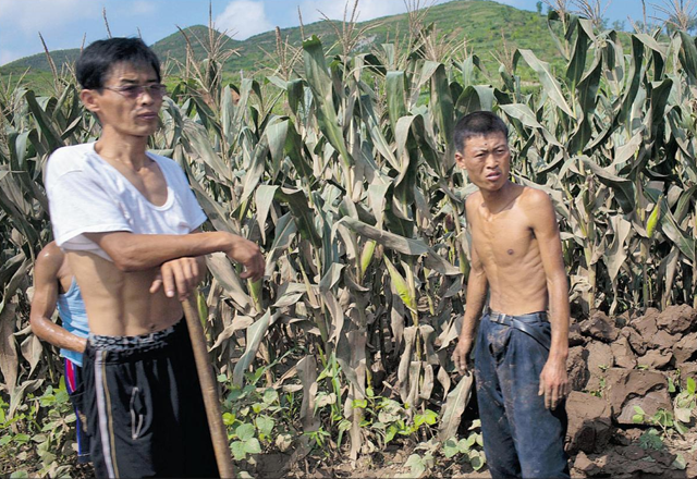 North korea humanitarian crisis