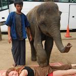 Тайланд 17.05.2012 12-26-34.jpg