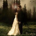 Twilight Live Wallpaper HD icon