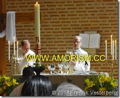 DSC01410.JPG Sankta Eugenia katolska kyrka Gudstjänst där de idag kanoniserade helgonen Johannes Paulus II och Johannes XXIII nämndes första gången i eukaristiska bönen (1) med amorism