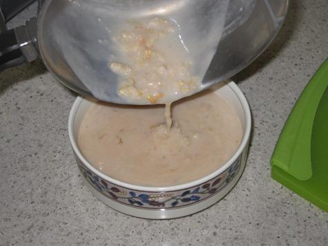 butterscotch oatmeal 025