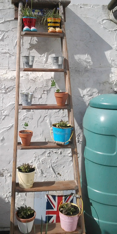 ladder garden display