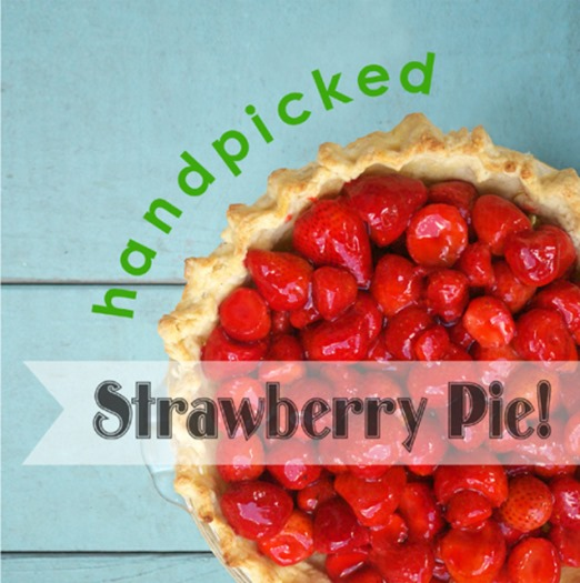handpicked-strawberry-pie-header2