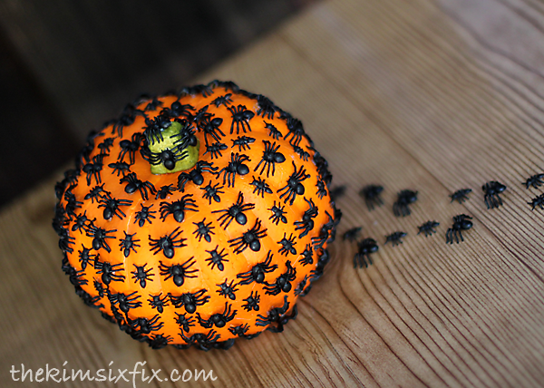 Spiders crawling on pumpkin