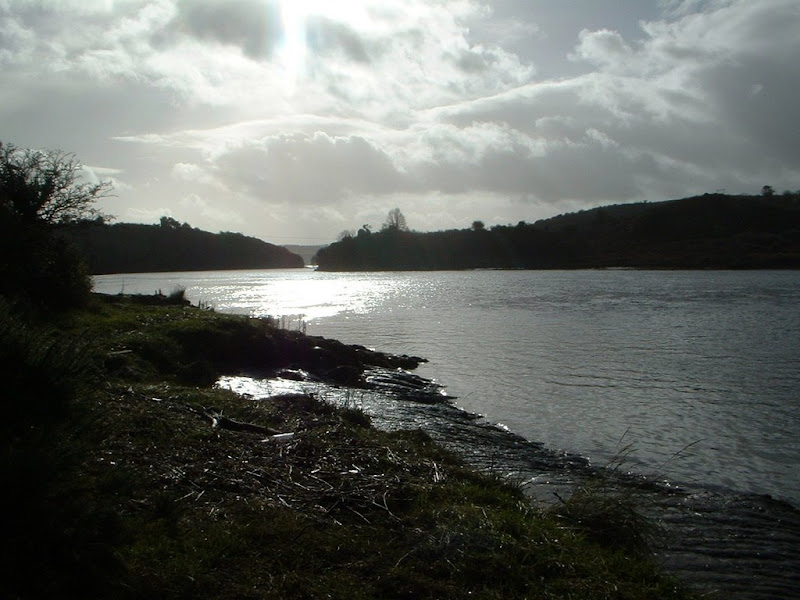 Coolbagh Quay on the river Blackwater-Bernie Fleming.JPG