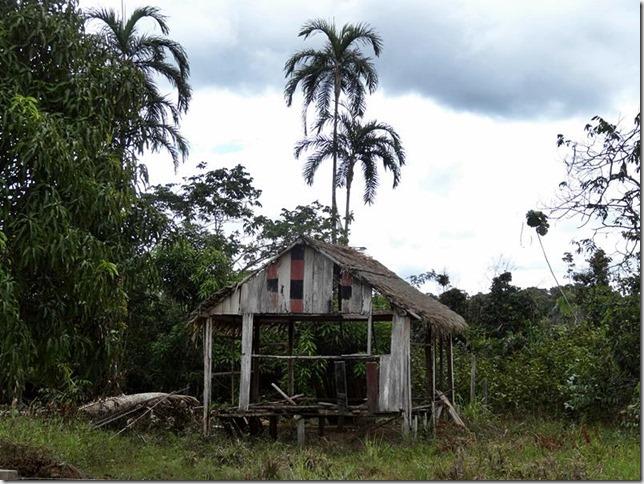 BR-319_Humaita_Manaus_Day_1_DSC05233