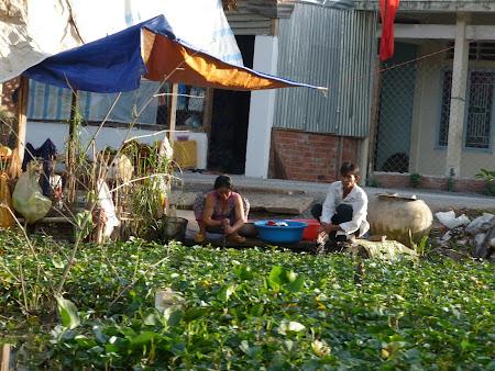 Treburi casnice in Delta Mekongului