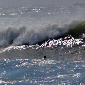 Catching the wave by Richard Moyen - Landscapes Beaches ( point judith, rhode island, surfer, wave, surf )
