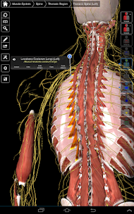 Essential Anatomy 3 - screenshot thumbnail