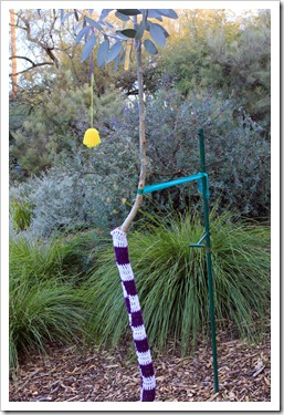130119_UCDA_AustralianCollection_Natural-Transformations-yarn-bombing_24