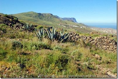 7897 Circular Montaña Guía(Pico Viento)