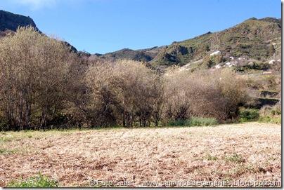 4888 Las Lagunetas-Los Arbejales