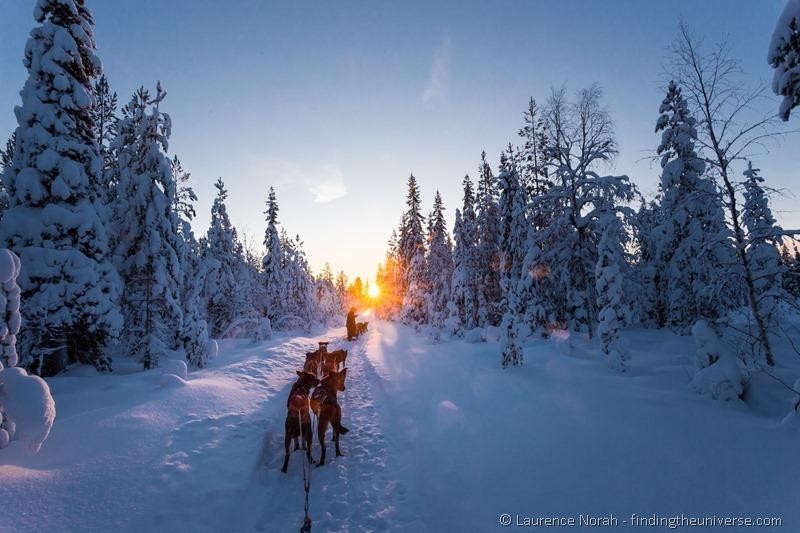 husky dogs sunset finland lapland