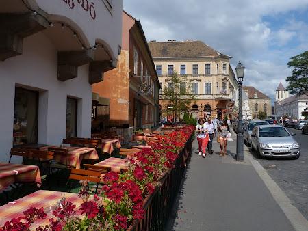 Obiective turistice Budapesta: prin Buda