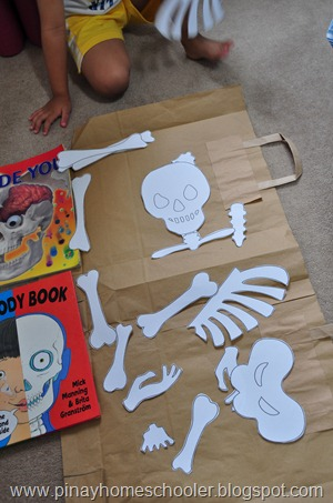 Our DIY Human Skeleton Puzzle