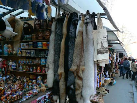 Imagini Ucraina: blanuri de vulpe