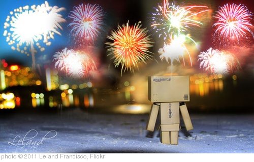'Happy New Year Danbo' photo (c) 2011, Leland Francisco - license: http://creativecommons.org/licenses/by/2.0/