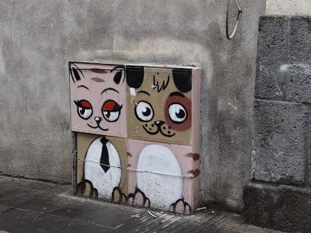 19. Pisici siciliene.JPG