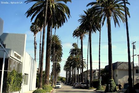 O strada obisnuita in Los Angeles