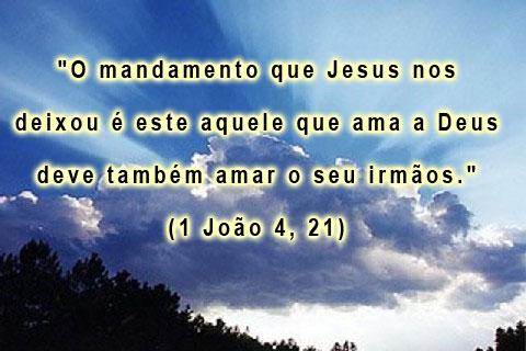 Frases Da Bíblia De Amor Quotes Links