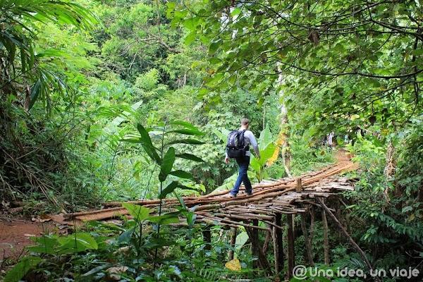 camboya-tekking-jungla-chi-phat-ecoturismo-unaideaunviaje.com-21.jpg