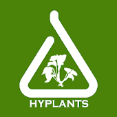 HyPlants Aquarium Plants