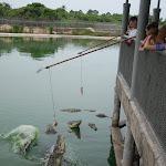 Тайланд 12.05.2012 5-57-06.JPG