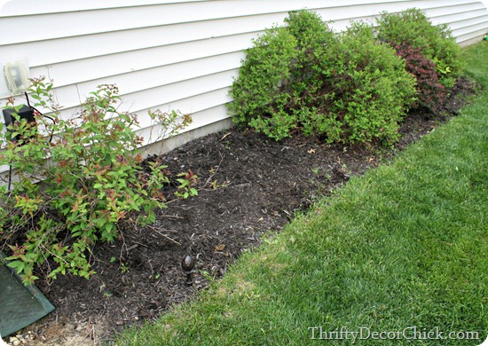 getting rid of weeds the easy way
