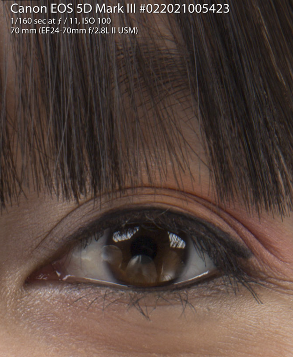 5D Mark III - Hair and Eyes at 100% Actual Size (from RAW)