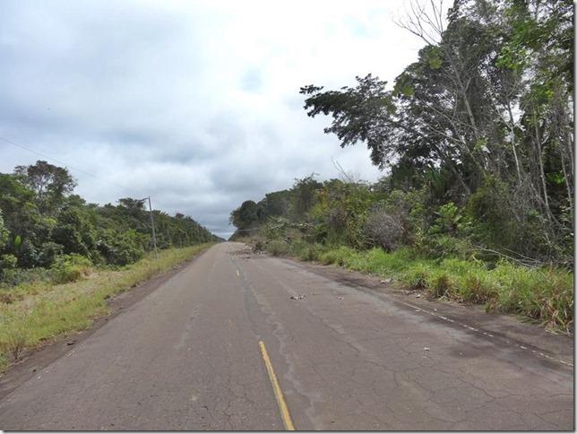 BR-319_Humaita_Manaus_Day_1_DSC05145
