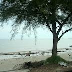 终于来到Morib海边。。