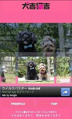 犬吉猫吉かわいいペットコレクション1のおすすめ画像2
