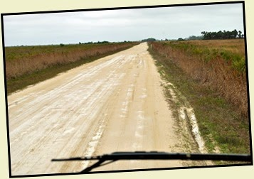 02f - Travel to Kissimmee Prairie SP