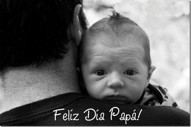 feliz dia del padre 2103 (1)