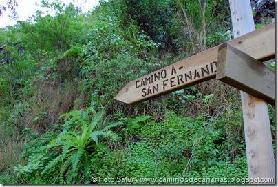 7166 Los Tiles-Firgas(Camino a San Fernando)