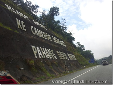 Welcom to Cameron Highlands