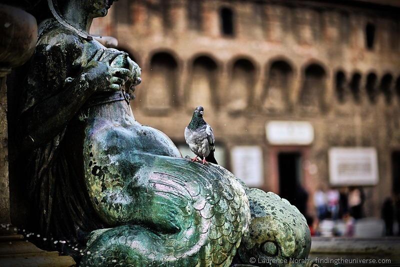 Bologna statue pigeon 1