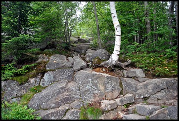 03 - Rocky start to trail