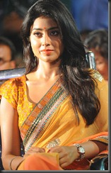 Shriya_Saran_gorgeous_photo_in_saree