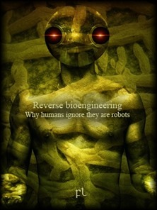 Reverse bioengineering - Why humans ignore they are robots Cover