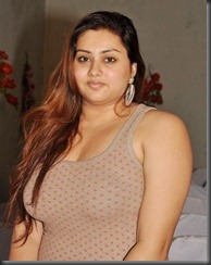 Tamil Actress Namitha Latest Hot Pictures