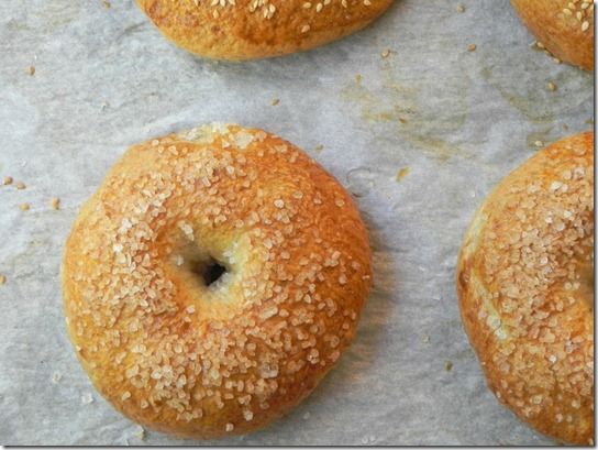 whole-wheat-sea-salt-bagel-3