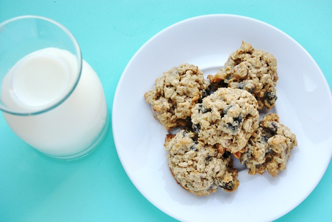 oatmeal raisin 025
