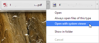 Chrome 33 PDF open with system viewer