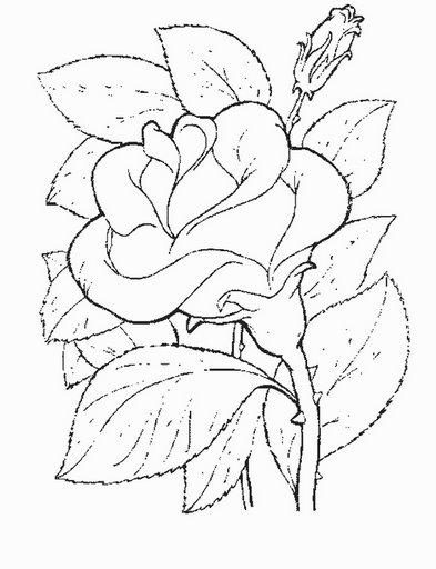 flower14.jpg